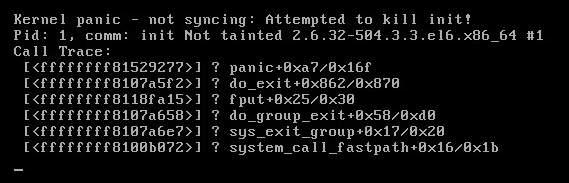 1-kernel-panic