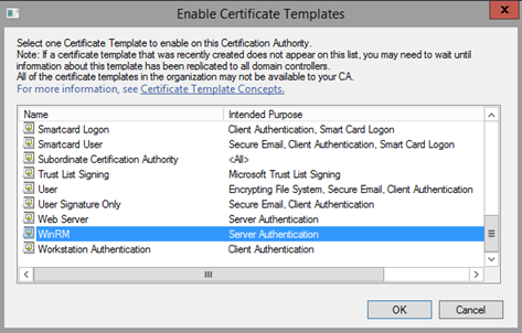 Pki ca manage certificate templates mohammed wasay now the ca can issue certificate requested from winrm template yelopaper Image collections